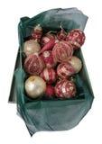Kerstmisspeelgoed in de groene doos Stock Afbeeldingen