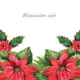 Kerstmisster 1 Stock Foto