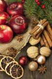 Kerstmisstilleven met fruit en kruiden Stock Afbeelding