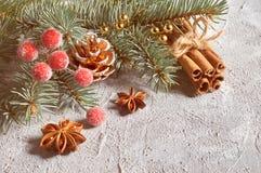 Kerstmisstilleven met verfraaide spartakjes en kruiden Royalty-vrije Stock Foto's