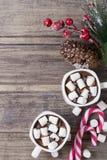 Kerstmisstilleven - twee koppen van hete chocolade met heemst, suikergoed en tak van spar met bessen Royalty-vrije Stock Foto's