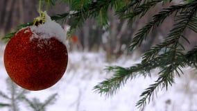 Kerstmisstuk speelgoed op een tak van sparren stock video