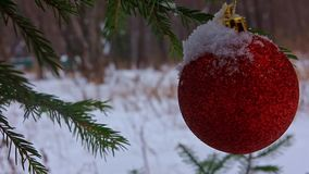 Kerstmisstuk speelgoed op een tak van sparren in het de winterpark stock footage