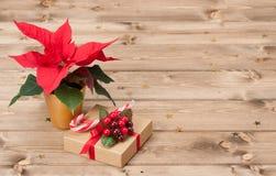 Kerstmissymbool Poinsettiabloem De doos van de gift Stock Fotografie