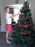 Kerstmistijd in Nieuw Zeeland Stock Afbeeldingen