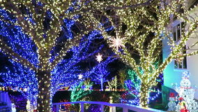 Kerstmisvakantie in Maryland stock videobeelden