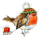 Kerstmisvogel en Kerstmisachtergrond De illustratie van de waterverf Stock Afbeelding