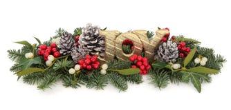 Kerstmisvreugde Royalty-vrije Stock Foto's