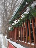 Kerstmisweek stock fotografie