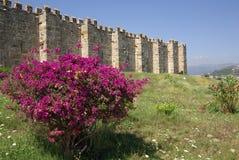 Kervansaray Sarapsa Han, Turquía imágenes de archivo libres de regalías