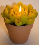 Kerze in Form einer Blume Stockfotos