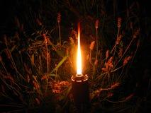 Kerze Frieden für die Welt Lizenzfreies Stockbild