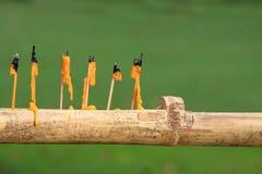 Kerze-Gelb Stockfoto
