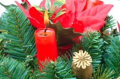 Kerze im Baum lizenzfreies stockfoto