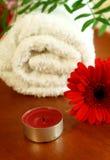 Kerze, rotes gerber und weißes Tuch stockfotos