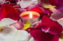 Kerze und Blumenblätter Stockfotografie