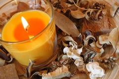 Kerze und getrocknete Anlagen Lizenzfreie Stockfotografie