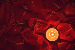 Kerze und rosafarbene Blumenblätter im Wasser lizenzfreie stockfotos