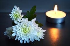Kerze und weiße Blumen Stockfoto