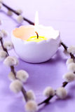 Kerze und Weide stockbilder