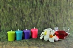 Kerze und wildes stockfotos
