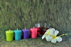 Kerze und wildes lizenzfreies stockfoto