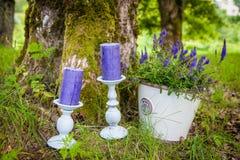 Kerzen auf Gras Lizenzfreies Stockbild