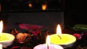 Kerzen Blumen-und Blätter auf dem Wasser stock video