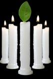 Kerzen mit Blatt Stockfoto