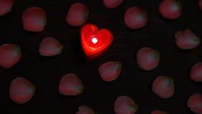 Kerzen-Rosablumenblatt stieg Holztisch hd Gesamtlänge stock footage