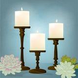 Kerzen-Trio mit Succulents gegen blauen Hintergrund Stockfotos