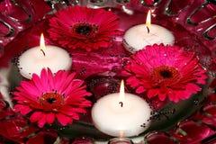 Kerzen und Blumen im Wasser Stockbild