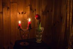 Kerzen und eine Tulpe Stockbilder