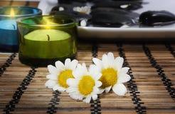 Kerzen und Gänseblümchen vor Kieseln Lizenzfreies Stockbild