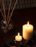 Kerzen und Schilf Lizenzfreie Stockfotografie