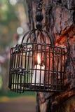 Kerzenlaterne auf dem Baum Stockbilder