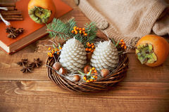 Kerzentannenzapfen auf einem Holztisch Lizenzfreies Stockbild