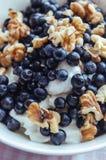 Keso med blåbär, muttrar och honung Royaltyfri Fotografi