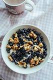 Keso med blåbär, muttrar och honung Fotografering för Bildbyråer