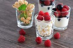 Keso med gräddfil i ett exponeringsglas med nya bär Yoghurt med bär Vit vinbär i ett exponeringsglas Arkivbilder