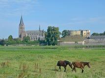 Kessel Maas flod, Limburg, Nederländerna Royaltyfri Fotografi