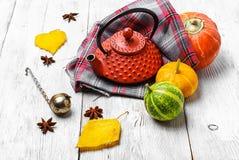 Kessel und Herbstkürbis Stockbild