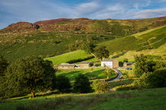 KESWICK, CUMBRIA/UK - 30. AUGUST: Ansicht eines Bauernhofes nahe Keswick herein Stockfoto