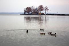 Keszthely. Hungary. Ducks and lake royalty free stock photo
