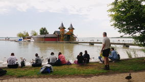 Keszthely, Hungury, im Juni 2017: Leuterest in einem Park nahe Plattensee Sie sitzen auf dem Gras durch das Wasser, die Schwäne v stock video footage