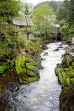 Ketchikan Alaska Royaltyfria Bilder