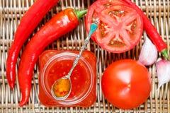 ketchup Atasco chutney Confitura Salsa picante de tomates y de la pimienta para la carne y las pastas ketchup imagen de archivo