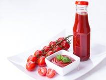 Ketchup, ketchup i en flaska och en bunke med körsbärsröd paniclestoma Arkivbild