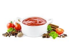 Ketchup med kryddor Royaltyfri Foto