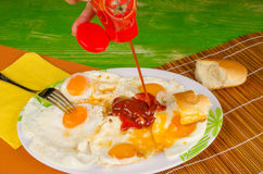 Free Ketchup On Eggs Royalty Free Stock Photos - 42309748